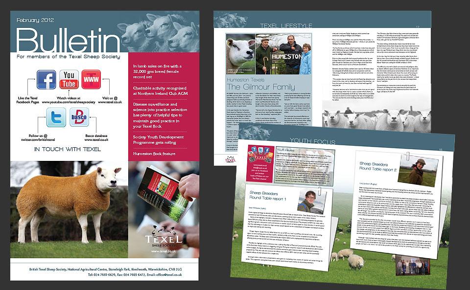 Texel Bulletin